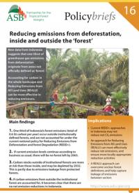 Reducing emissions from deforestation, inside and outside the 'forest': ASB PolicyBrief 16