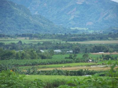 The World Agroforestry Centre (ICRAF) has been working at the landscape level for many years and has accumulated a depth of knowledge and expertise in the approach