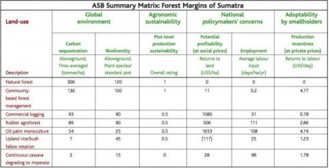 The ASB matrix helps policy makers weigh the different benefits (global, national, local) produced by different land use systems. ASB Summary Matrix for Sumatra by T. Tomich