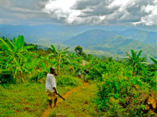 Promoting sustainable landscape transformations in multifunctional landscapes requires an integrated approach. Landscape at the foothills of Mt. Elgon National Park in southeast Uganda. Photo credit: Connor J. Cavanagh