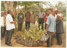 Landcare Group in Nigeria distributing seedlings as part of a revegetation