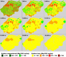 The effect of scale on hot spots of carbon emissions in Tanjung Jabung Barat, Jambi, Indonesia, between 2000 and 2009. Pixel resolution of 100 m equals pixel area of 1 ha and pixel resolution of 1000 m equals pixel area of 1 km2. Source: World Agroforest