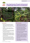 Agroforestry can help countries achieve their NDCs
