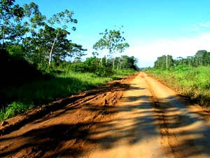 The road towards Brazil in Madre de Dios Province, Peru: Once this is paved it will undoubtedly bringing deforestation with it